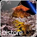 JapaneseSakura LWallpaper Free logo
