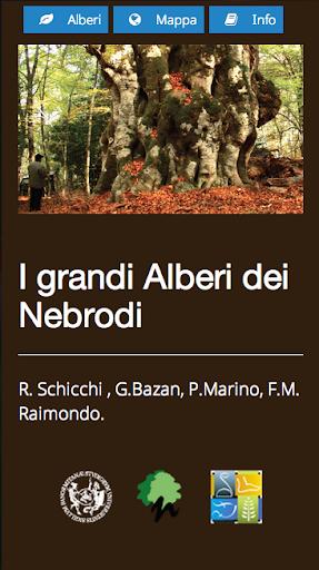 Grandi alberi dei Nebrodi