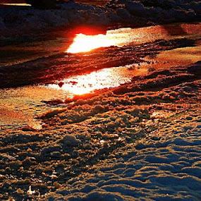by Nat Bolfan-Stosic - Landscapes Sunsets & Sunrises ( water, winter, sunset )