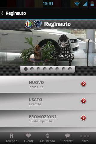 Reginauto Mobile - screenshot
