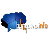 Burzowo.info (lightning map)
