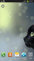 Screenshot of Curious Cat Lite