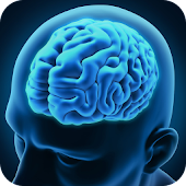 Brain Training : Cerebrum