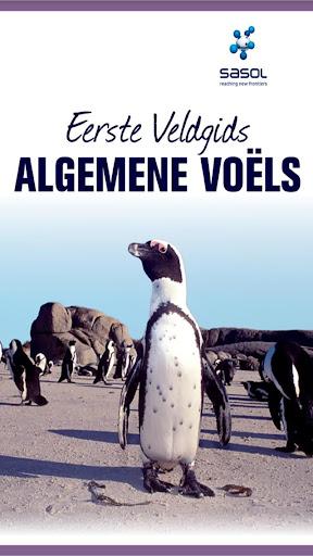 Sasol Veldgids Algemene Voëls