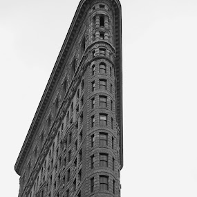 Flat Iron building by Austin Lawler - Buildings & Architecture Office Buildings & Hotels ( b&w, architectural detail, architecture, new york city, ny, flat iron, historic,  )