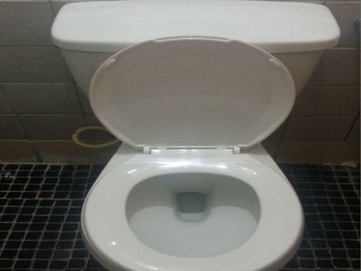 Real Toilet