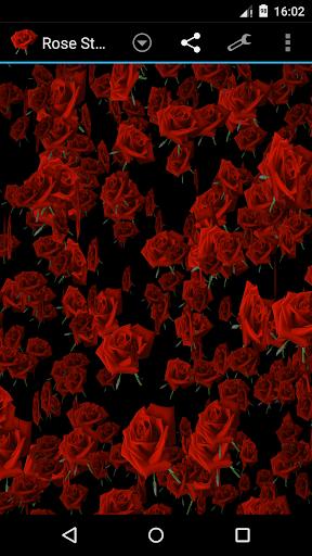 玫瑰风暴3D壁纸