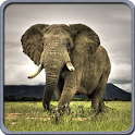 Wild Life Live Wallpapers icon