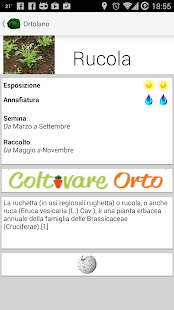Ortolano- miniatura screenshot