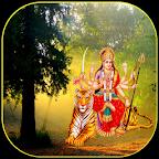 Magic Durga LiveWall & Temple