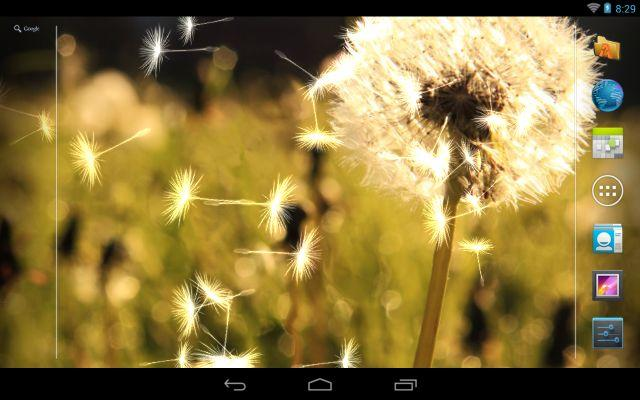 Dandelion Live Wallpaper ★ - screenshot
