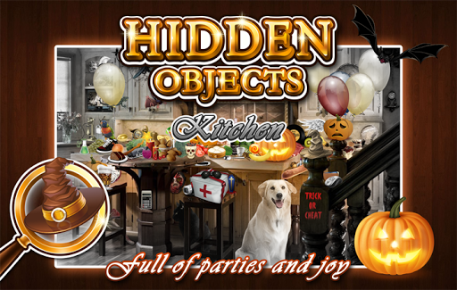 Hidden Object - Cleaning Room