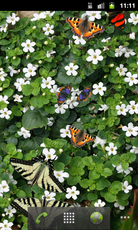 Butterfly Live Wallpaper Free - screenshot