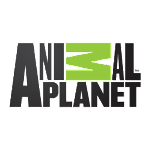 Animal Planet 1.1 APK for Android APK