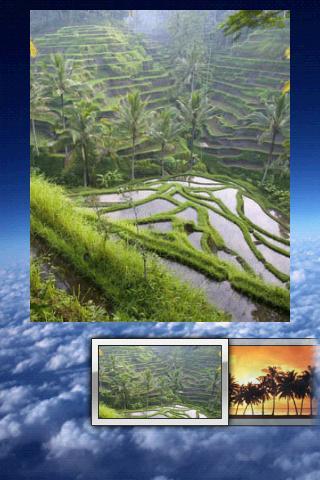 Nature Wallpaper Puzzle - screenshot