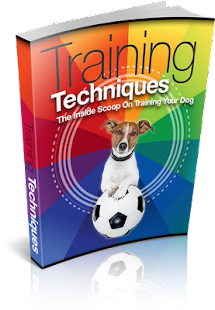 Free Dog Training Tips - screenshot thumbnail