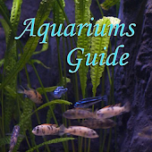 Aquariums Guide