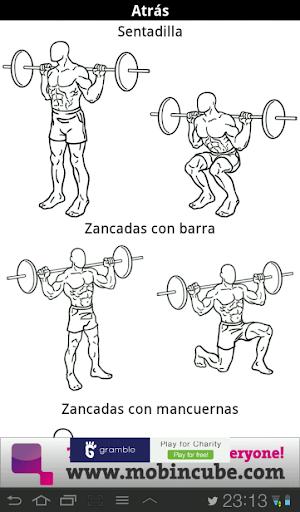 Guia ejercicios musculacion