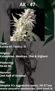 Marijuana Handbook- Weed Guide - screenshot thumbnail