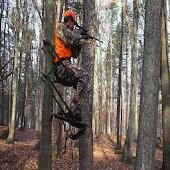 Hunting Calls Free