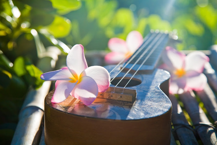 A plumeria lei laid over a ukulele, the Hawaiian string instrument brought to Hawaii from Portugal in the 19th century.
