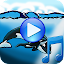 Whales songs to sleep 1.0 APK for Android