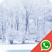 Winter Wallpapers for WhatsApp