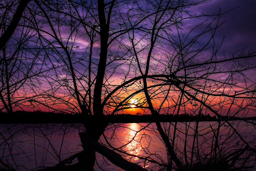 Sunset over lake by Mason Bletscher - Landscapes Sunsets & Sunrises ( water, sunset, colors, trees, lake, sun,  )