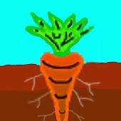 vegetable planner