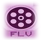 HD FLV Video Player