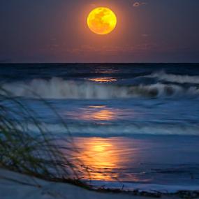 Easter Moon Over Hilton Head by Jim Crotty - Landscapes Beaches ( calm, moon, purple, jim crotty, hilton head island, waves, art, ocean, beauty, beach, tidal, coastal, photography, south carolina, moonrise, tides, nature, full, peace, lunar, landscape )