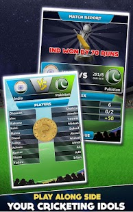 Cricket Career World Cup- screenshot thumbnail