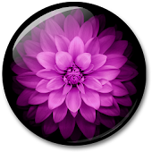 Flowers HD Live Wallpaper