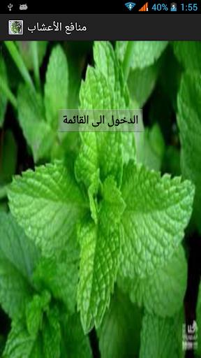 منافع الأعشاب الطبية