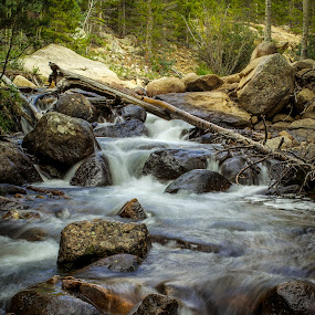 Stream near Alberta Falls by David Andrus - Landscapes Waterscapes ( alberta falls, colorado, rmnp )