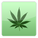 Weed Wallpapers (480x850)
