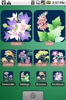 Screenshot of DVR:Seven Herbs of Autumn