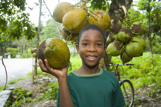 fruit-stand-Jamaica - A boy at a fruit stand in Jamaica.