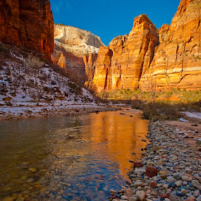 Zion Big Bend by Patrick Flood - Landscapes Mountains & Hills ( canon, big bend, national park, reflection, photosbyflood, winter, utah, virgin river, snow, red rocks, zion )