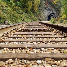 Track Into Darkness by Stephanie Turner - Transportation Railway Tracks ( breaks day 2,  )