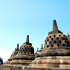 Stupa in Borobudur Temple by Taufik Ear - Buildings & Architecture Public & Historical