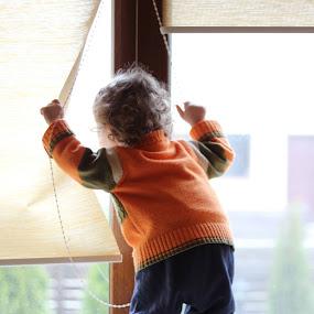 Secretul descoperit azi-dimineață: vin berzele! by Evelin Ceciu - Babies & Children Children Candids