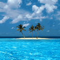 Tropical Island Live Wallpaper icon