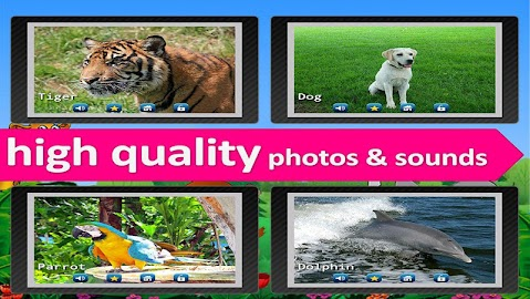 Kids Zoo,Animal Sounds & Photo Screenshot 28