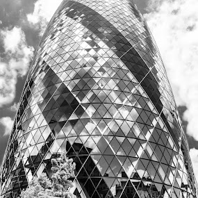 The Gherkin by Cesare Morganti - Buildings & Architecture Office Buildings & Hotels ( b&w, gherkin, london, black and white, architecture,  )