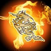 Fire Dragon, Theme 480x800