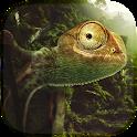 Chameleon Live Wallpaper icon