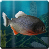 Piranha Live Wallpaper HD
