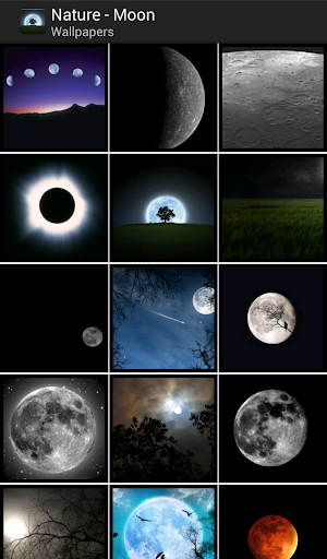 The Moon - HD Wallpapers