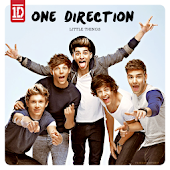 Fan One Direction